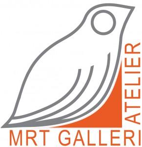 Fugl med orange med lys graa